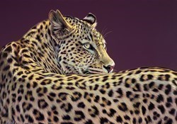 Look of Desire by Darryn Eggleton -  sized 39x28 inches. Available from Whitewall Galleries